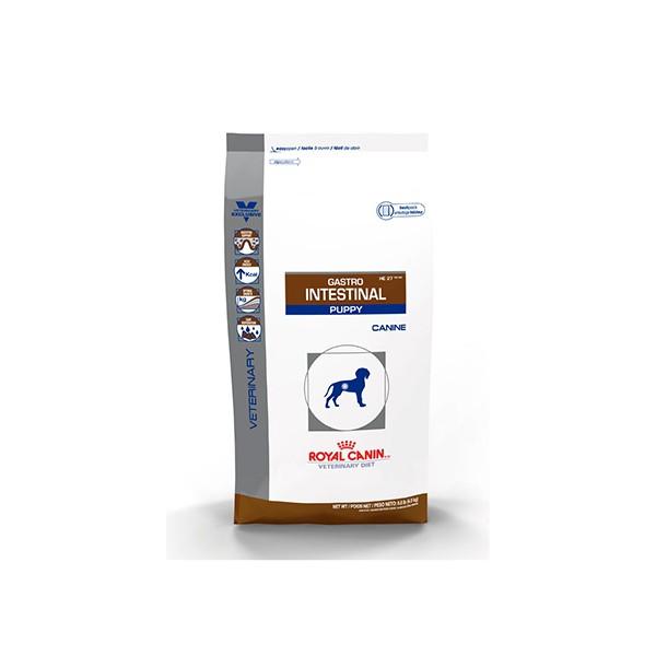 Gastro-Intestinal Puppy