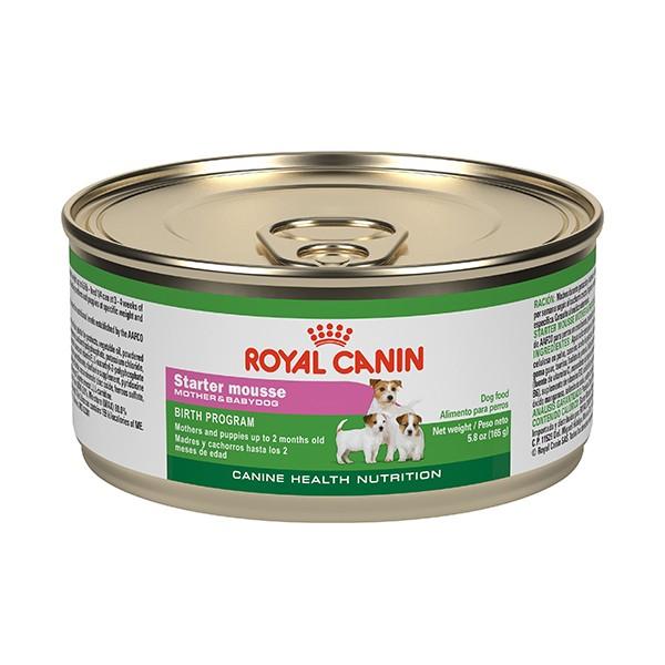 Royal Canin  Starter Mousse Lata