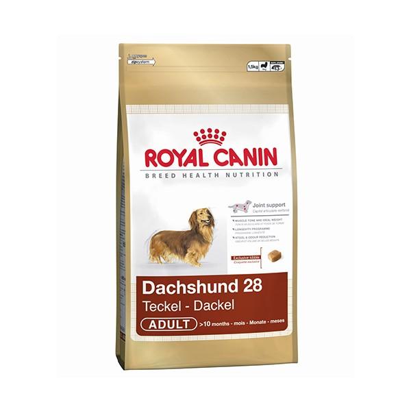 Royal canin BHN Raza Salchicha