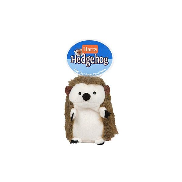 Hedgehog Puerco Espin